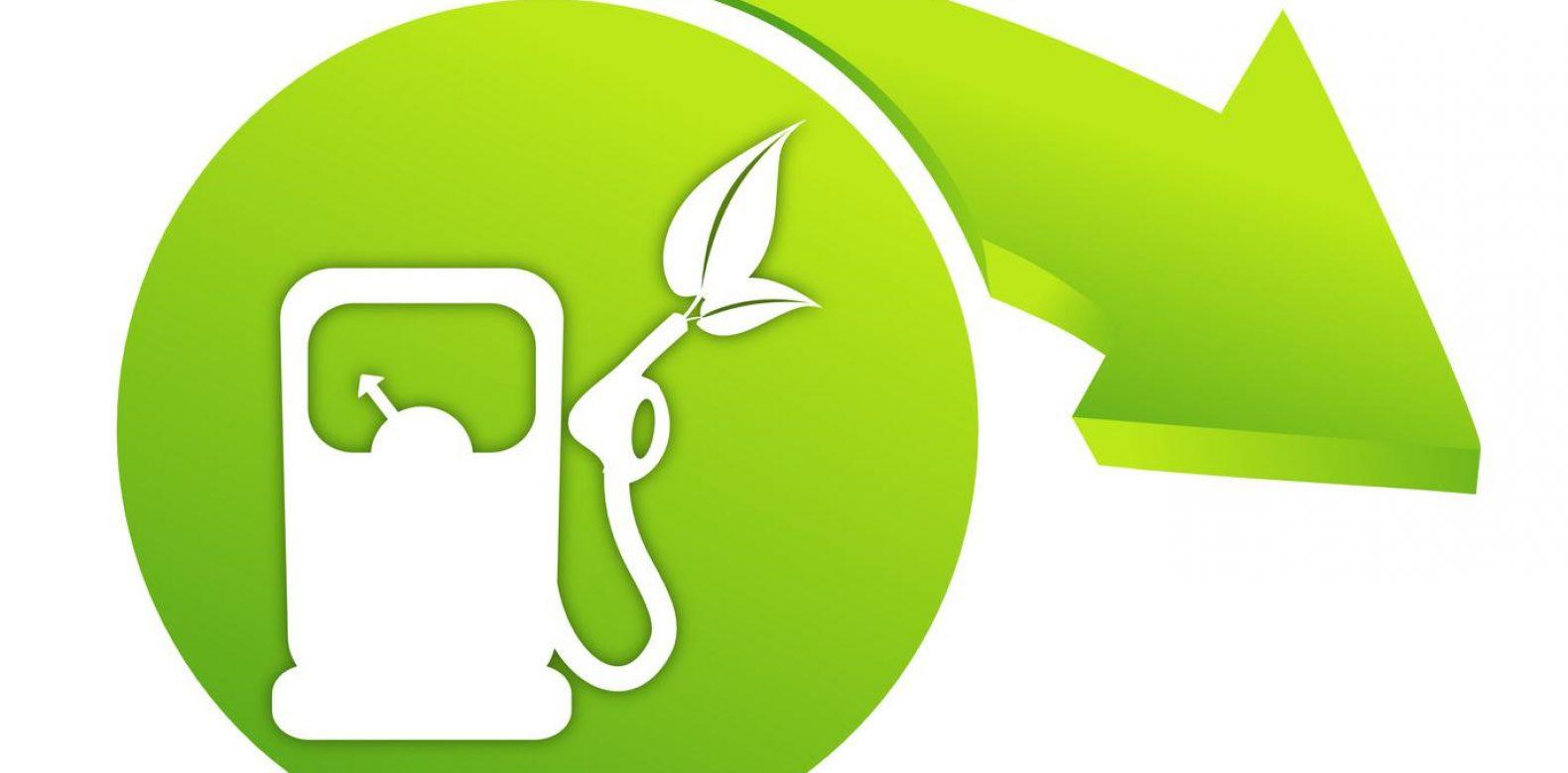 Situation et perspectives des filières de biocarburants en région Grand Est