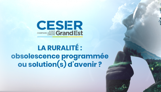 Ruralité : obsolescence programmée ou solution(s) d'avenir ?