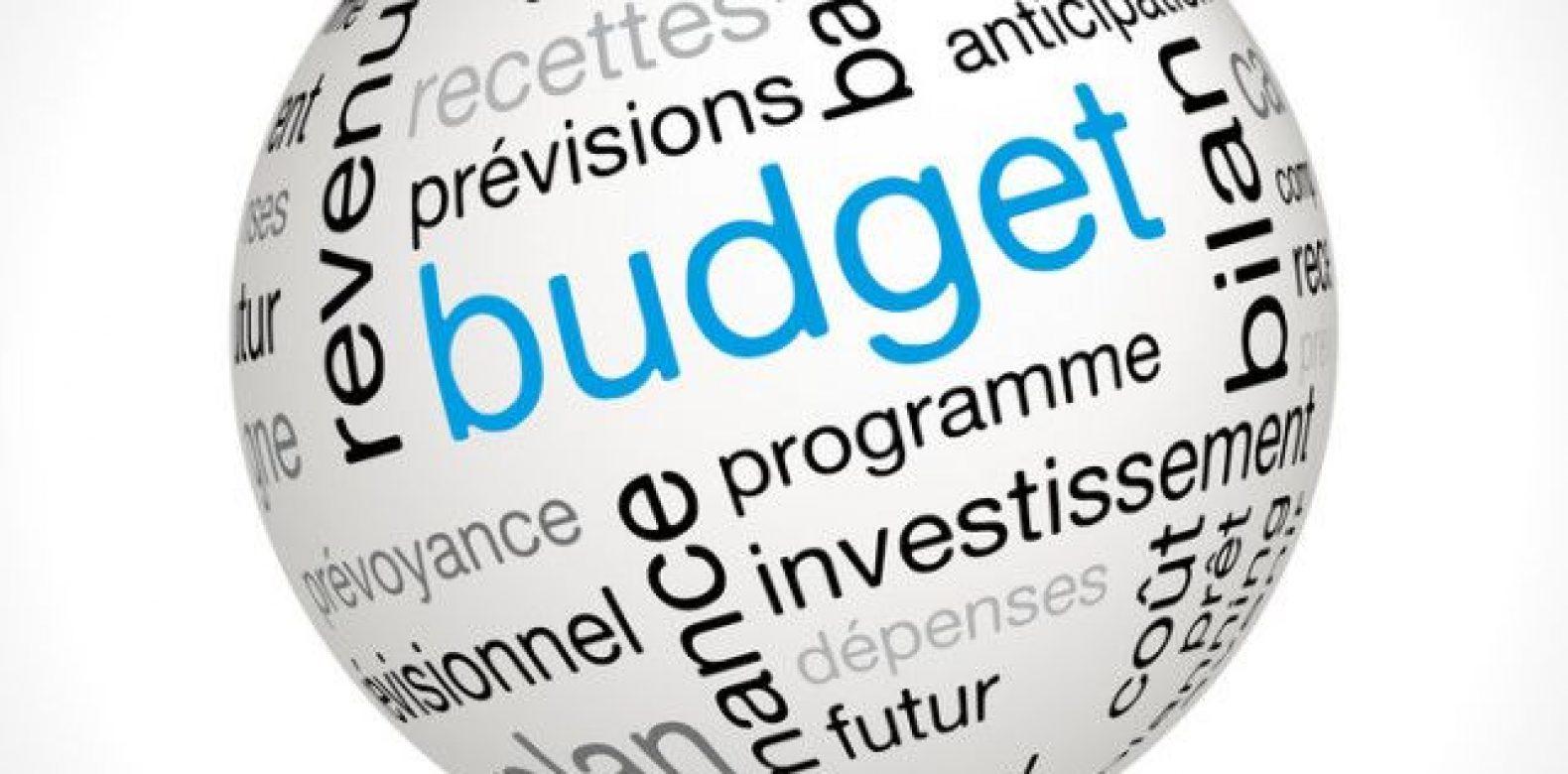 Avis sur le Budget supplémentaire 2020