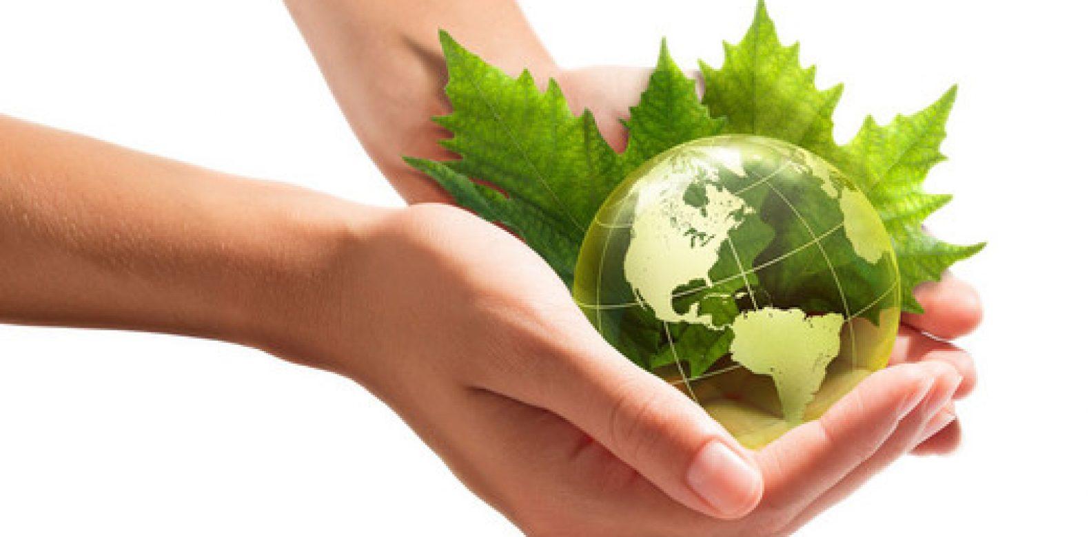 Avis | Situation en matière de développement durable 2020
